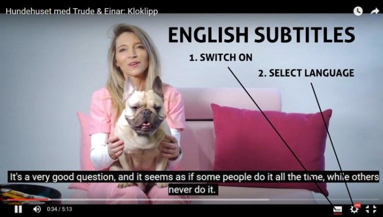 English Subtitles