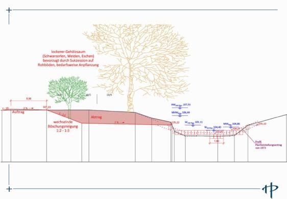 Querschnitt: So soll die Flutmulde mit Sekundäraue aussehen. (c) Ingenieurgemeinschaft Heidt + Peters (Celle)