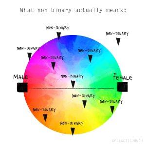 ein bunter Kreis, an dessen horizontalen Enden des Durchmessers male und female steht (verbunden durch eine schwarze Linie) auf dem Rest des Kreises sind verteilt an unterschiedlichen Punkten kleine Dreiecke über denen