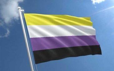 nicht binär flagge - waagerechte Streifen von oben nach unten gelb, weiß, lila, schwarz - vor blauem Himmel