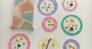 DIY: Fensterbilder mit gepressten Blumen - Basteln für den Muttertag
