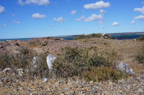 Müll bei Puerto Deseado