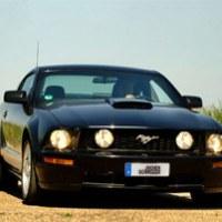 Ford Mustang fahren (4 Std.)