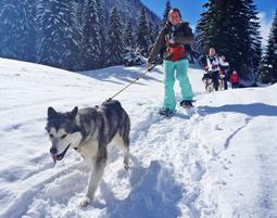 Vier Pfoten fuer Ihr Winter-Abenteuer!