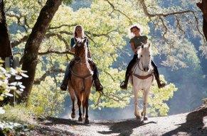 Geniess das zuegellose Vergnuegen fuer Reitanfaenger und passionierte Pferdefreunde!
