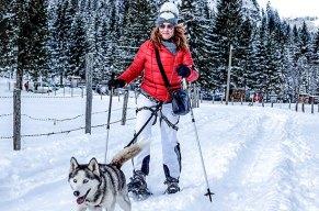 Mit Schneeschuhen und 4 Pfoten-Antrieb den Berg rauf!