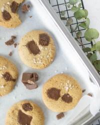 Hier sind zuckerfreie Schoko - Cookies zu sehen. Die Schoko - Cookies liegen auf einem silbernen Backblech und wurden von oben fotografiert. Auf den Cookies ist ein Stück geschmolzene Schokolade zu sehen und ein paar grobe Salzkörner.