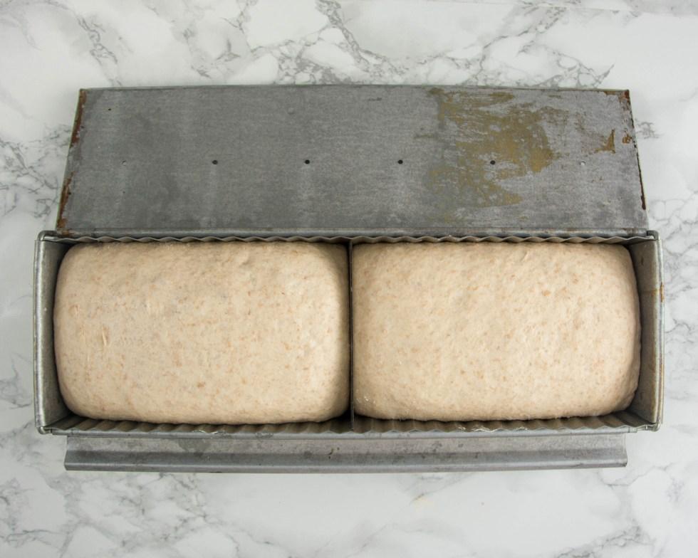 Dieses Toastbrot liegt in einer Toastbrotform. Das Bild wurde von oben fotografiert und zeigt den Toast kurz bevor er in den Backofen kommt.