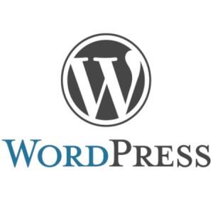 Strona-internetowa–najlepsza-wizytówka-każdej-firmy-wordpress