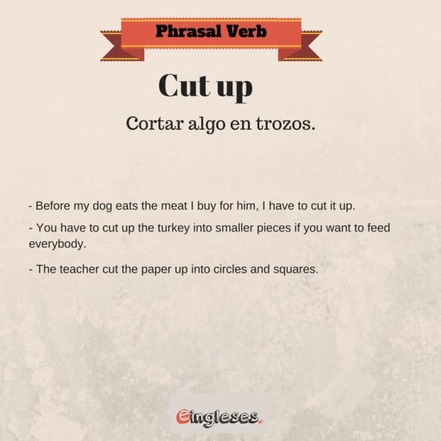 Phrasal Verb cut up