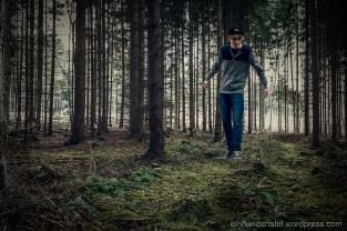 Schweben über dem Waldboden.
