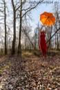 levitation_rot_tagged_klein