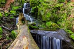 Wasserfall_Blauenthal012