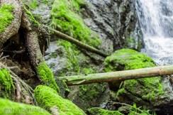 Wasserfall_Blauenthal030