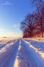 Winter20_2017