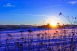 Winter_2017