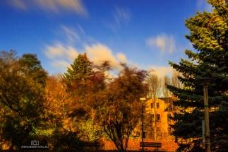 EH1_Blick zum alten Haus