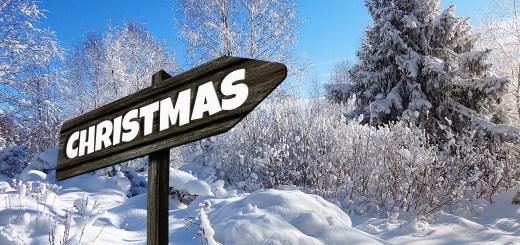 Einkaufstrolley Vergleich Geschenkideen / Weihnachtsgeschenk - Einkaufstrolley