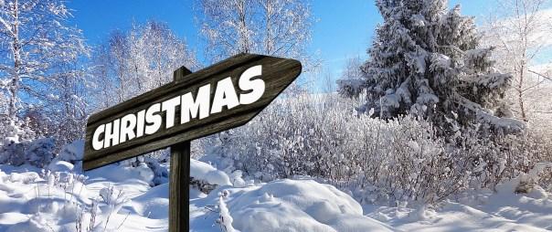 Einkaufstrolley Vergleich Geschenkideen zu Weihnachten Teil 3