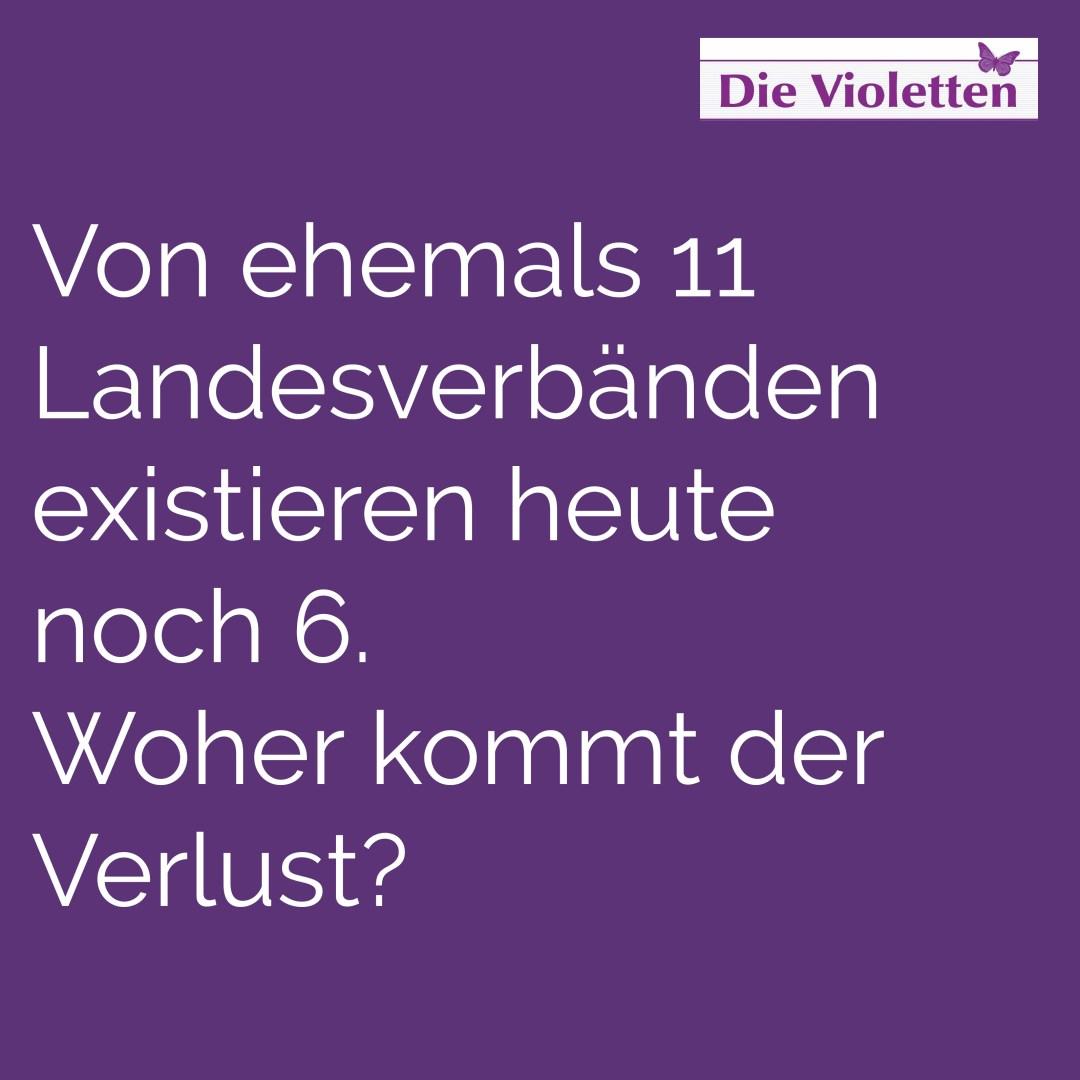 Frage 2_Die Violetten