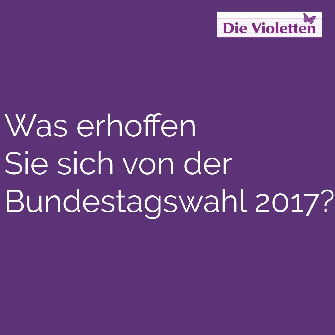 Frage 3_Die Violetten