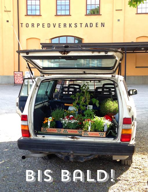 Stockholm Stadtreise Städtetipp, 48h Stockholm