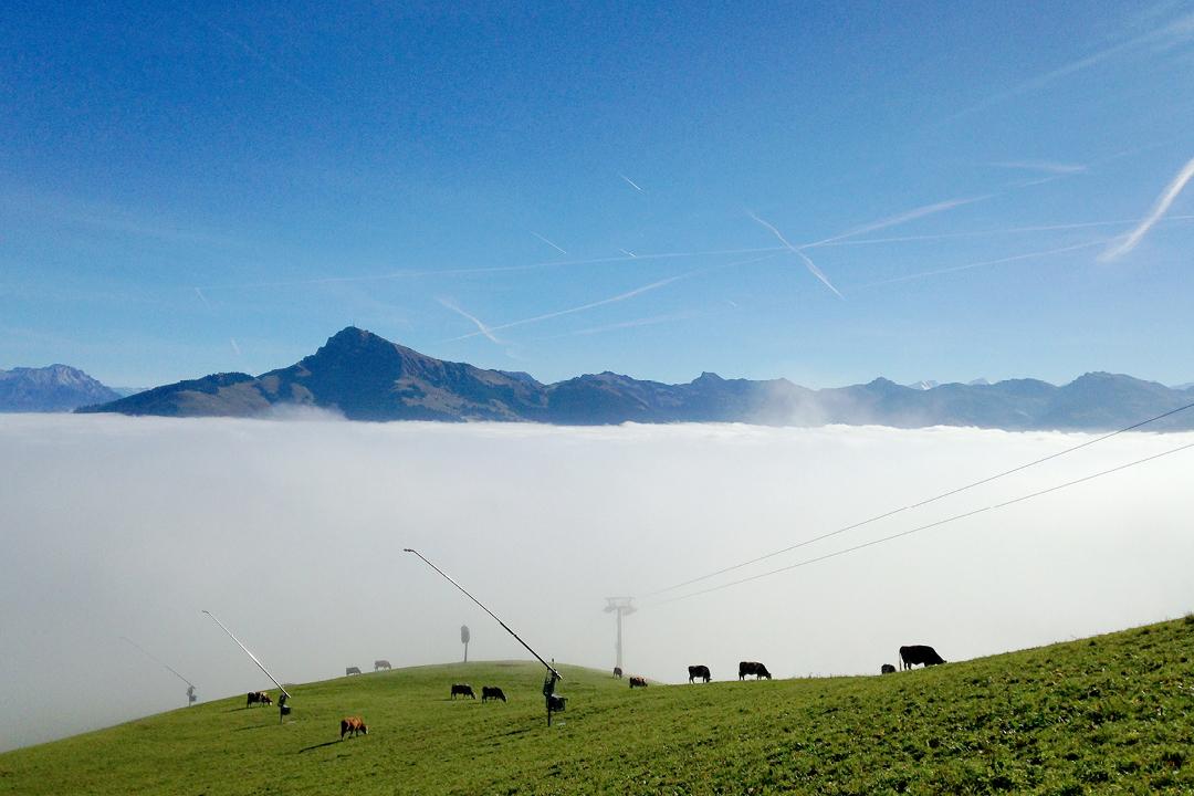 Wanderurlaub mit Kleinkind in Tirol