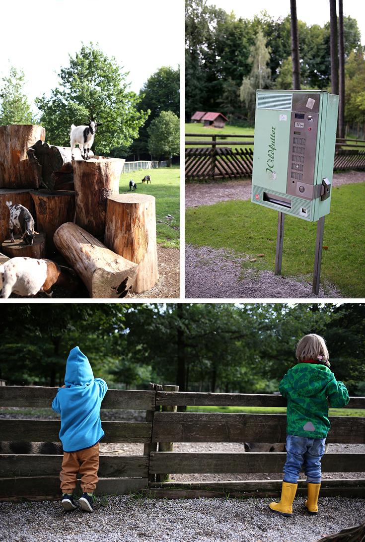 Wildpark, Tierpark, München, Ausflugstipp mit Kind