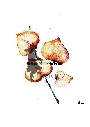 Wasserzeichen_Aquarell orange Blüten 03-20