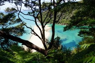 Sandflies Bay