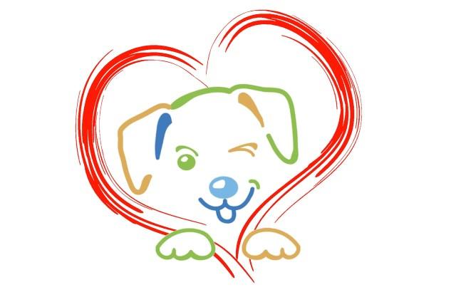 Hundetraining Hundeschule Einzeltraining Hundeerziehung Amichien Bonding Tellington Touch Dog Slumber Parcour Freilauf Bilder Berichte