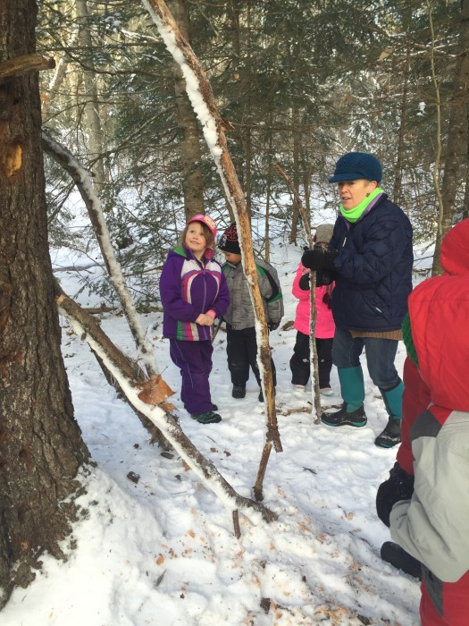 """Kindergarten looks at woodpecker holes in tall pine trees. We then decided to build a """"home for giant woodpeckers"""" out of sticks."""