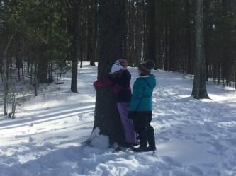 Blind Tree Find