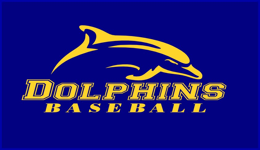 West Clare Dolphins Logo 2013