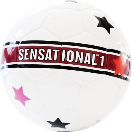 Soccer ball Sensational college 01