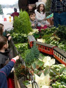 Bus Trip: The Wonderland Express at the Chicago Botanic Gardens