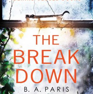 Adult Book Discussion: The Breakdown