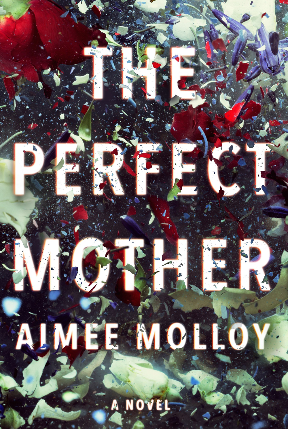 02 The Perfect Mother