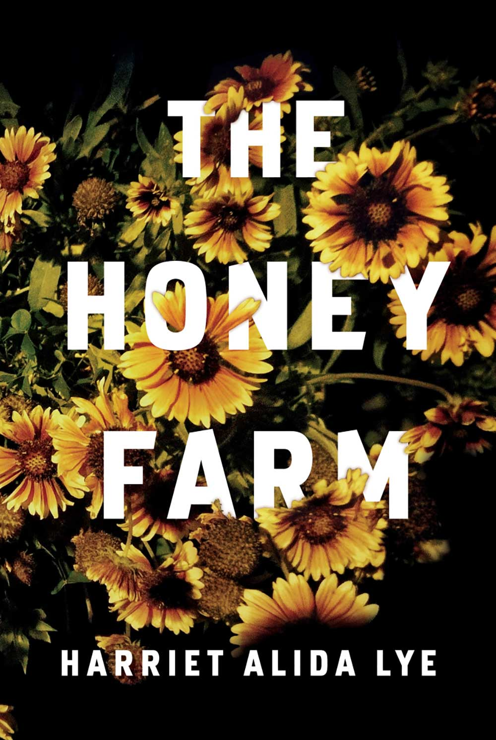 04-The-Honey-Farm
