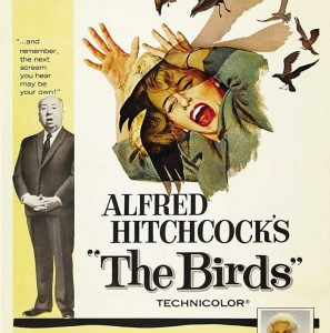 Films for our Feathered Friends