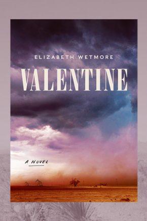 Virtual Book Discussion: Valentine