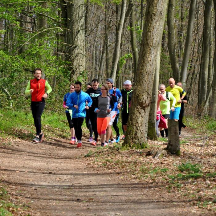 09-trailrunning-trier-22.04.17
