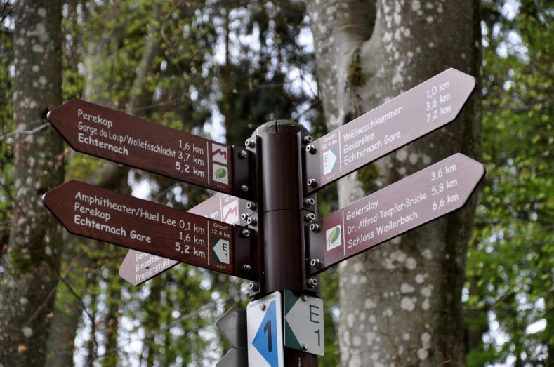 19-trailrunning-trier-22.04.17