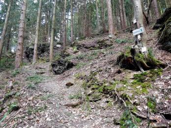 Extratour Mehringer Schweiz Rocite305 (4)