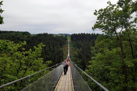 Geierlay – Hängeseilbrücke