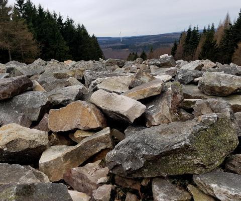 Vom Erbeskopf [RLP] zum Dollberg [SL] :: 55k im Nationalpark Hunsrück Hochwald