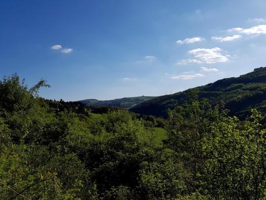 Morscheider Grenzpfad (1)