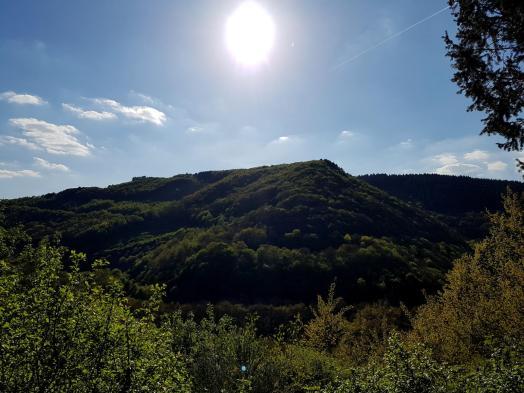 Morscheider Grenzpfad (30)