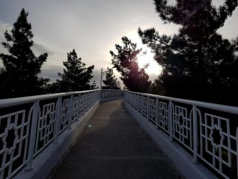 Path of health - 84
