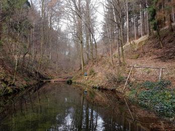 Revierguide Suedpfalz Tag 2 Inov8 Roclite305 (9)